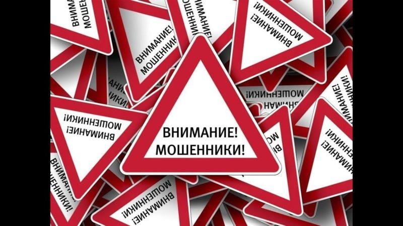 Полина Большакова какие отзывы о бизнес коуче - bolshakovacoach.ru?